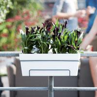 Green Basics balkonbak
