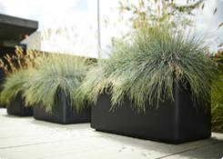Plantenbakken voor buiten