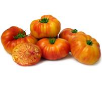 Speciale groenten zaden