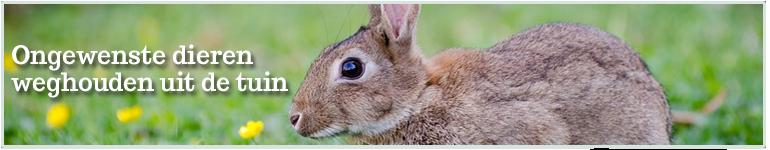 dieren weghouden uit tuin katten honden konijnen en vogels