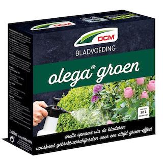 DCM Olega Bladvoeding voor buxus en rozen 500 ml