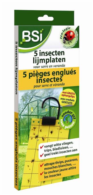 Insecten lijmplaten 5st