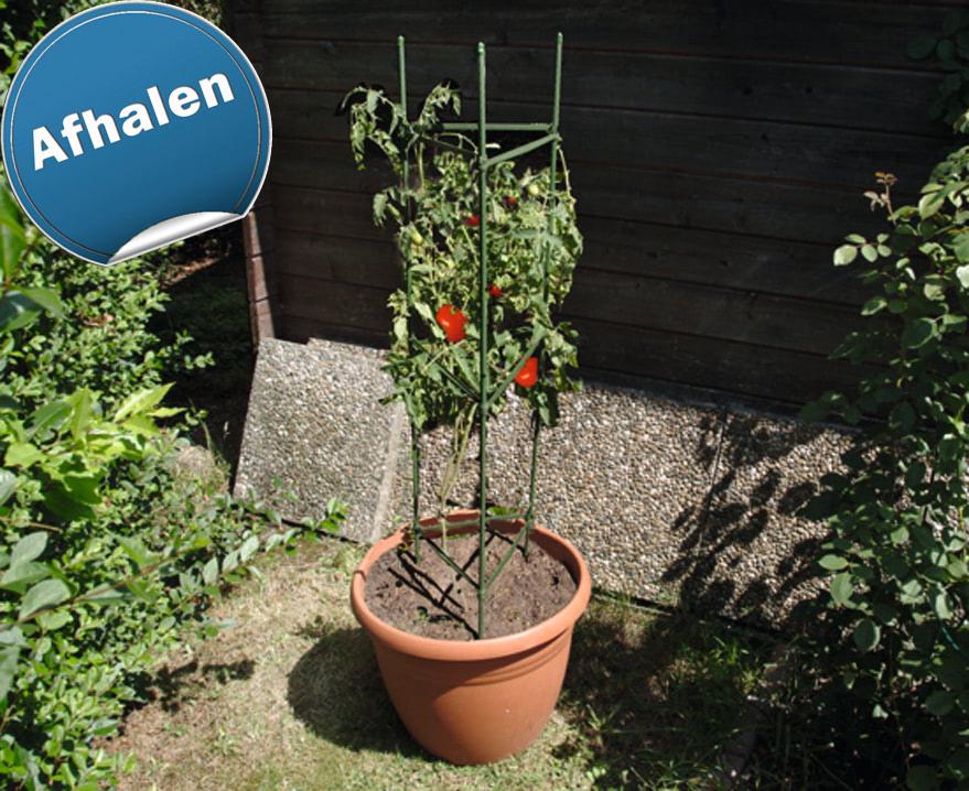 Tomatencilinder