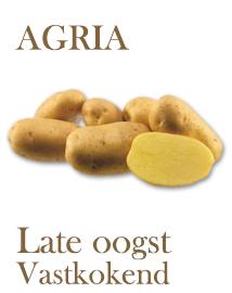 Pootaardappelen Agria 2,5 kg