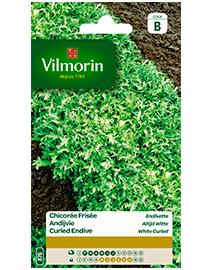Vilmorin Krulandijvie zaden Altijd Witte 4g