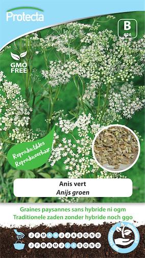 Anijs zaden groen