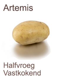 Pootaardappelen Artemis 2,5kg