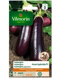 Vilmorin Aubergine zaden Avan Hf1 0,4g