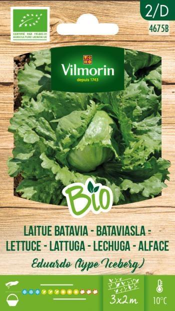 Bio groenten zaden Bataviasla Eduardo (type ijsbergsla)