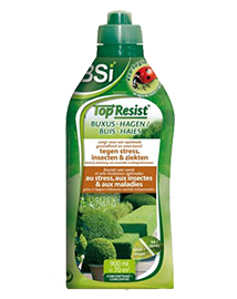 BSI Top Resist Buxus en Hagen 900ml