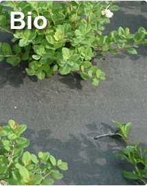 Bio gronddoek Ökolys - Composteerbaar 2,07 x 100m