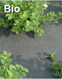 Bio gronddoek Ökolys - Composteerbaar 1,05 x 100m