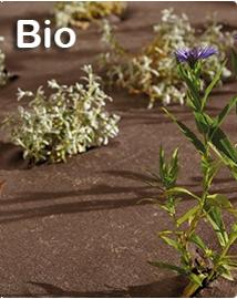 Bio worteldoek per m2
