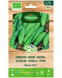 Bio groenten zaden Augurk Hokus HF1 2g