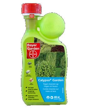 calypso garden tegen insecten op hagen en buxus. Black Bedroom Furniture Sets. Home Design Ideas