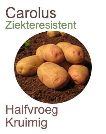 Pootaardappelen Carolus voor het biologisch telen 2,5kg