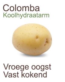 Pootaardappelen Colomba 2,5kg