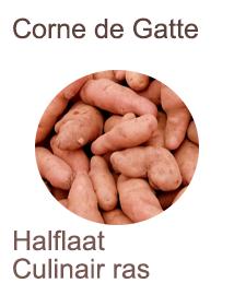 Pootaardappelen Corne de Gatte 1kg