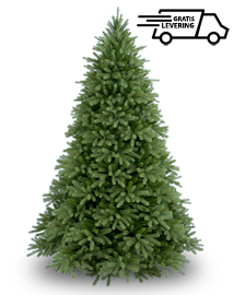 Luxe Kunstkerstboom Christmas Miracle Frasier 213cm