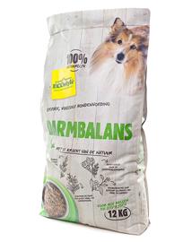 Ecostyle Hondenbrokken VitaalSpeciaal Darmbalans 12kg