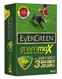 Evergreen GreenMax gazonmest 80m²