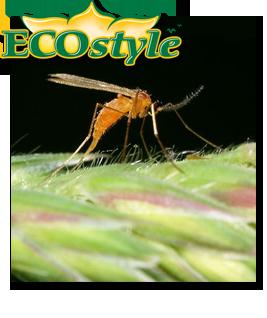 Ecostyle Galmug tegen bladluis 1000 stuks