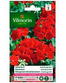 Bloemzaden Geranium Eclat Rood Hybride F2 0,3g