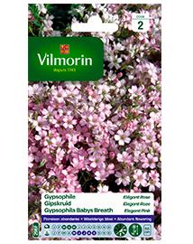 Bloemzaden Gipskruid Elegant roze