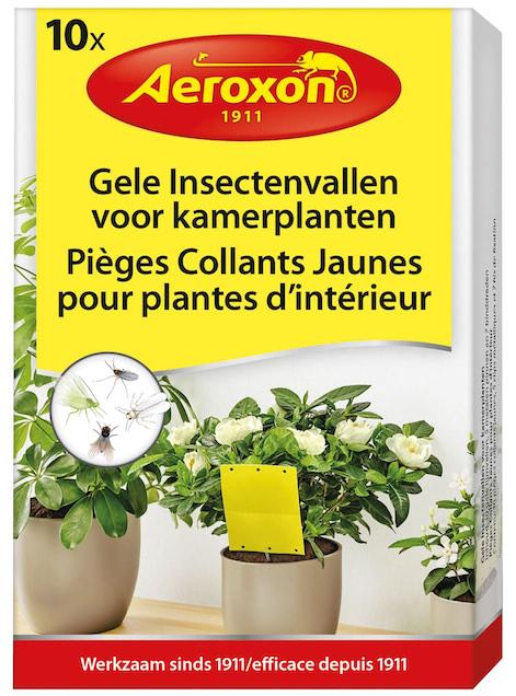 Insectenvallen voor kamerplanten 10 stuks
