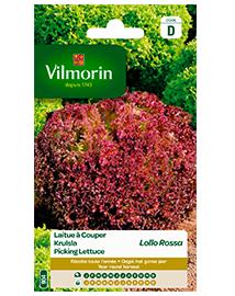 Vilmorin Krulsla zaden Lollo Rossa 3g