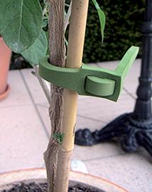 Plantenbinders voor bomen en planten 20st