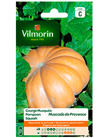 Vilmorin Pompoen zaden Muscade de Provence 2g