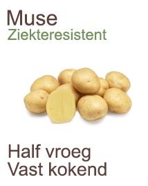 Pootaardappelen Muse 1kg