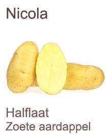 Pootaardappelen Nicola 1kg