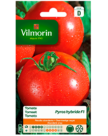 Vilmorin Tomatenzaad Pyros F1 0,1g