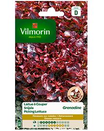 Vilmorin Snijsla zaden Gekrulde Grenadine 3g