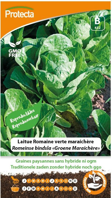 "Zaadvast Romeinse bindsla Zaden ""Groene Maraichère"""