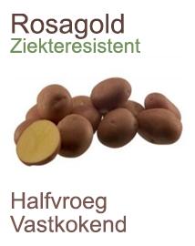 Pootaardappelen Rosagold 1kg