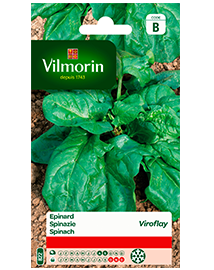 Vilmorin Spinazie zaden Viroflay Reuzen 15g