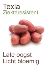 Pootaardappelen Texla 1kg
