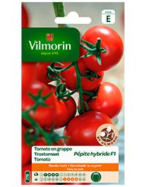Vilmorin Trostomaat zaden Pepite 0,15g