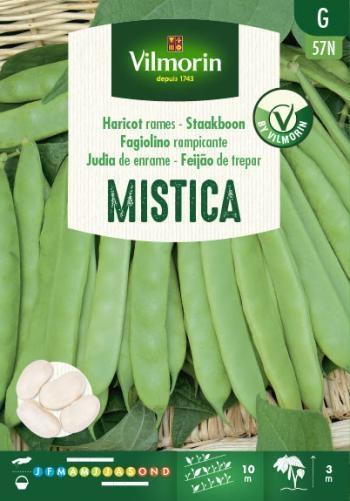 Vilmorin zaden Mistica Staakboon