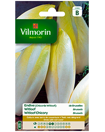 Vilmorin Witloof zaden Brussels 6g