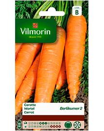 Vilmorin Wortel zaden Berlikumer 2 6g