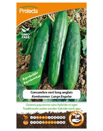 Zaadvaste Komkommer Zaden Lange Engelse