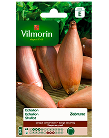 Vilmorin Zaden Echalion zebrune 2g
