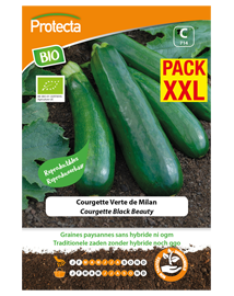 BIO Zaadvaste Courgette Zaden Black Beauty XXL