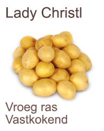 Pootaardappelen Lady Christl 1kg