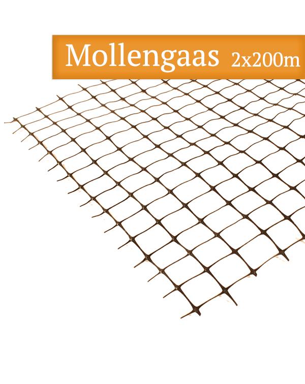 Mollengaas 2 x 200m