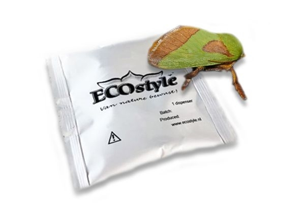 Feromoon tegen pruimenmot van Ecostyle